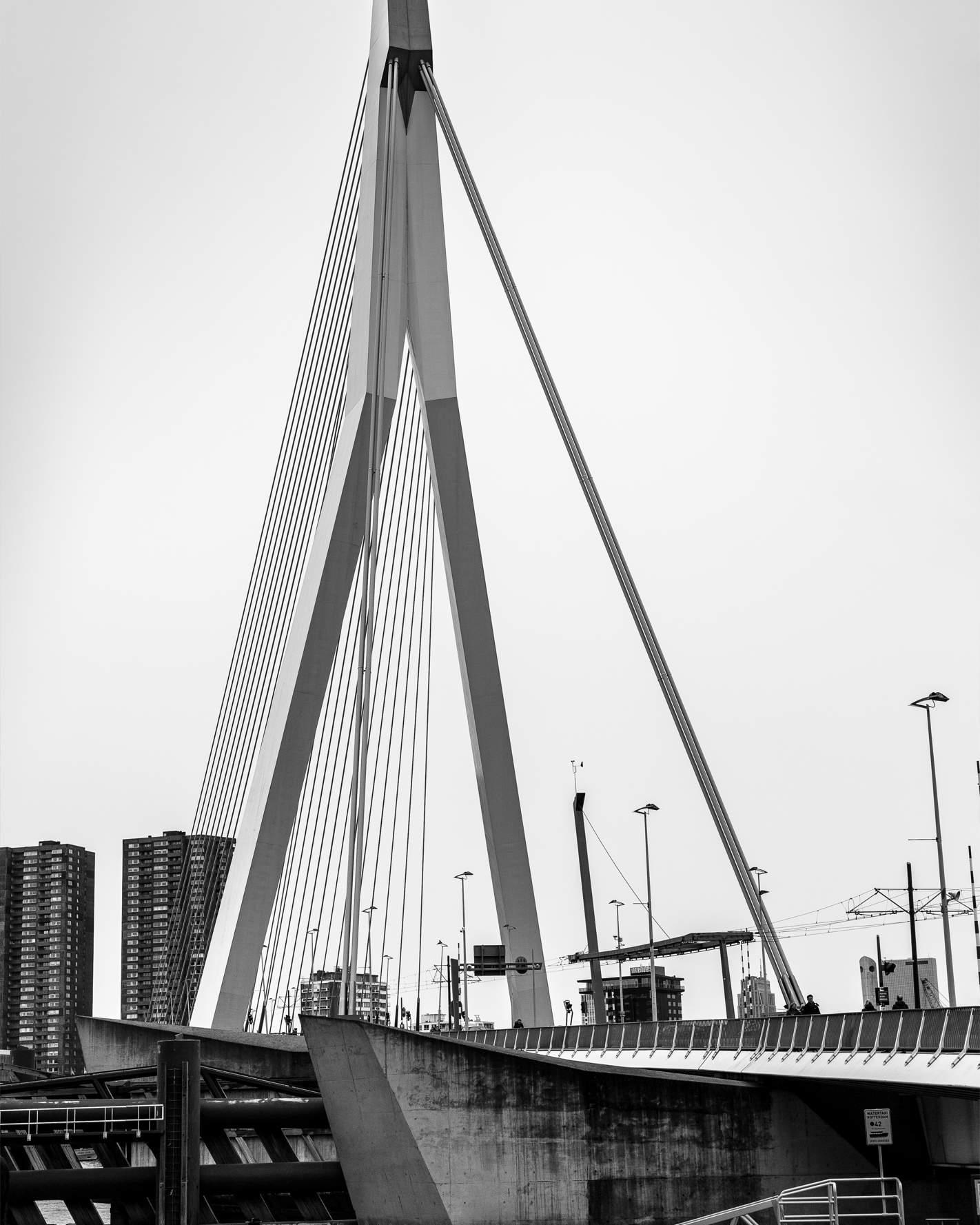 Großaufnahme der Erasmusbrücke in Rotterdam in schwarz-weiss