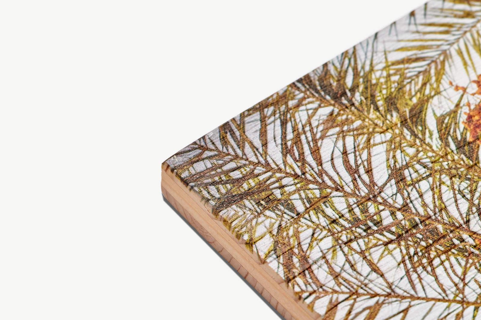 Oberfläche und Kante 19mm Kiefer Gebürstet